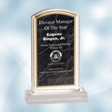 Black Marbleized Acrylic Award